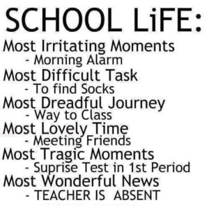 school-life-most-irritating-and-most-wonderful-things (from: nephub.com)
