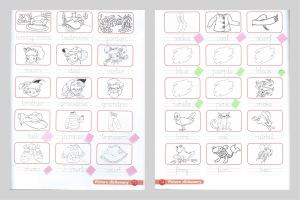 Roundup4_homework