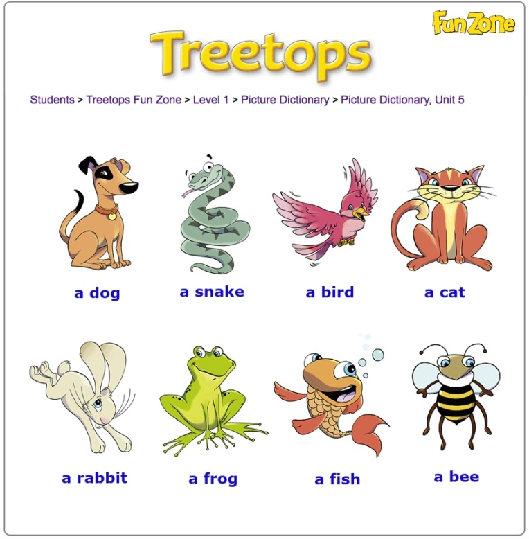 Picture dict Treetops1 unit5