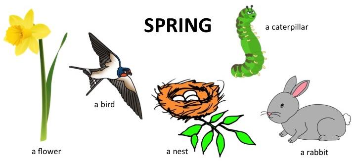 Spring vocab