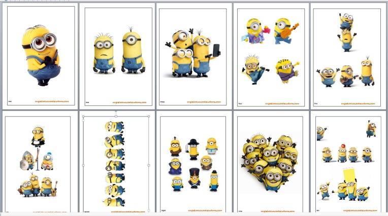 Minion flashcards