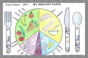 healthy plate_T model
