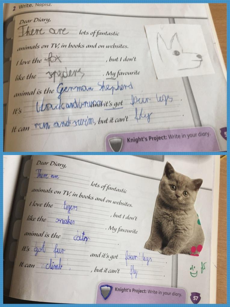 Animal_diary