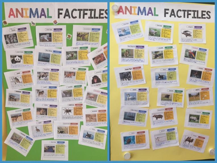 AnimalFact