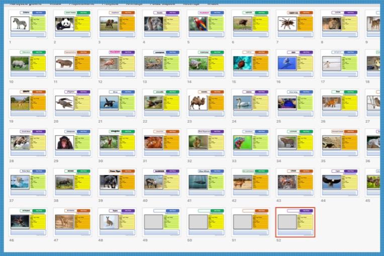 Factfile cards.jpg