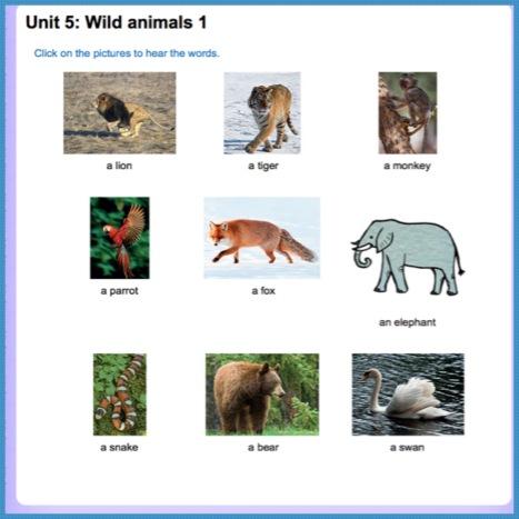 Unit 6 vocab1