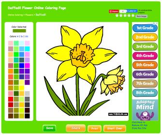 DaffodilColor