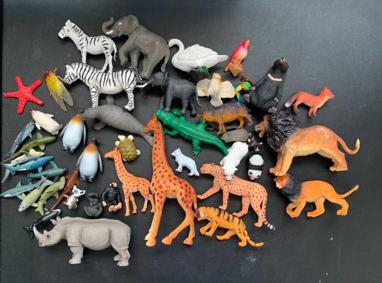 Animal collection.jpg