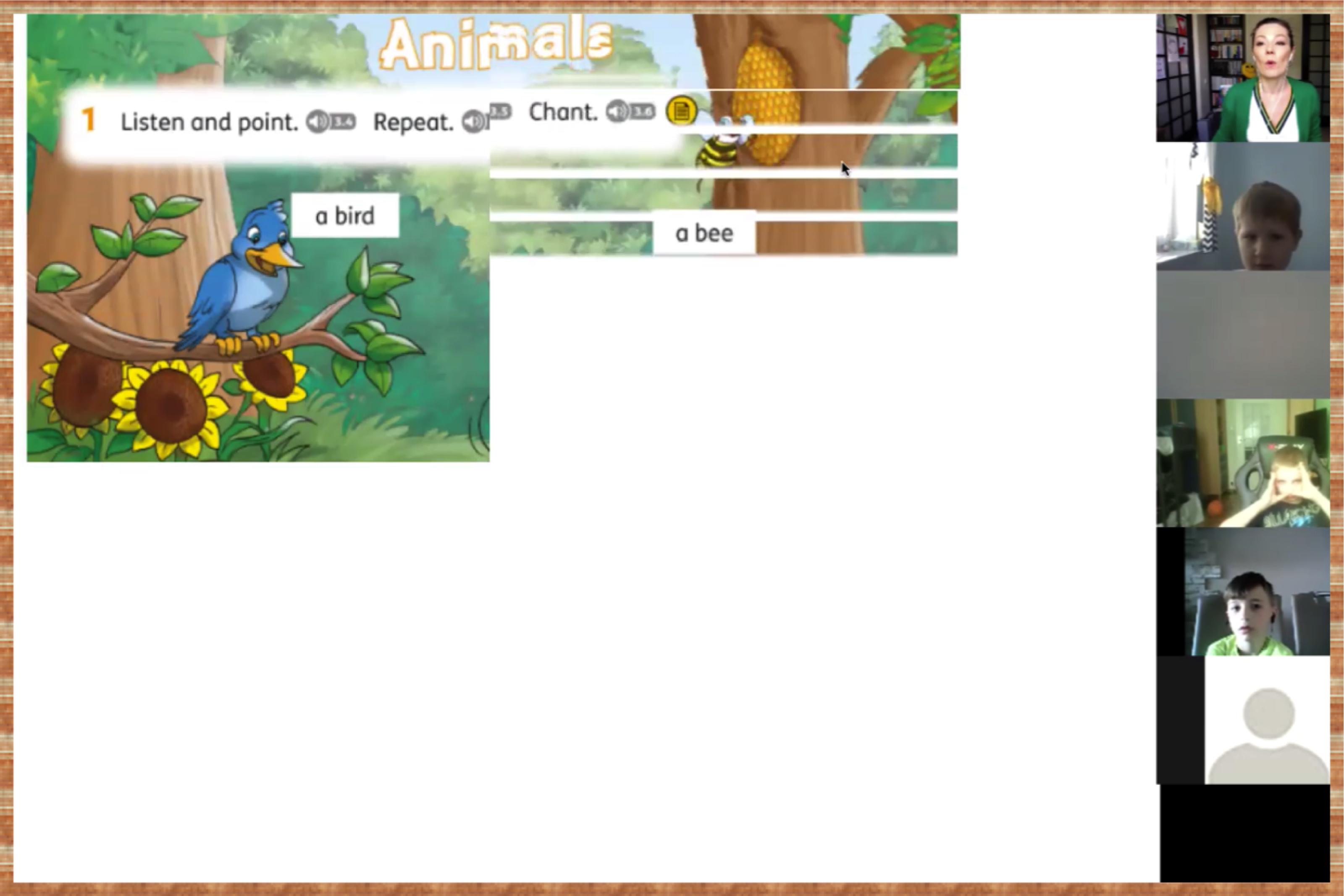 animals_revision